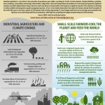Small-Scale Farmers Cool the Planet Video Launch   Fair World Project