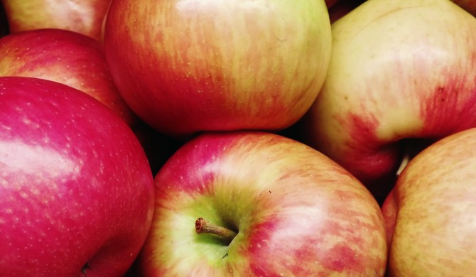 Celebrating Autumn with Apples