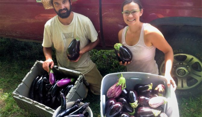 Alchemy Gardens Feeds Neighbors & Helps the Community Thrive